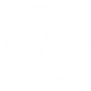 Sleepy Hollows Studios